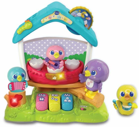 VTech Singing Bird House Baby Musical Toy, Educational ...